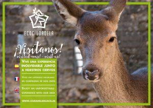 Ecociudadela, una experiencia inolvidable @ Ciudadela de Jaca