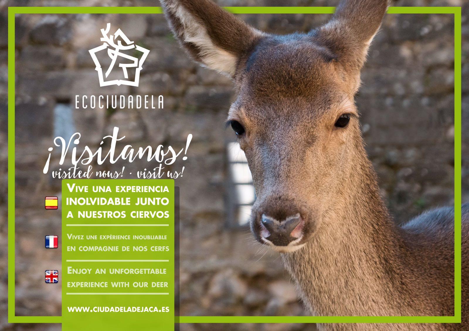 Cartel visitas Ecociudadela