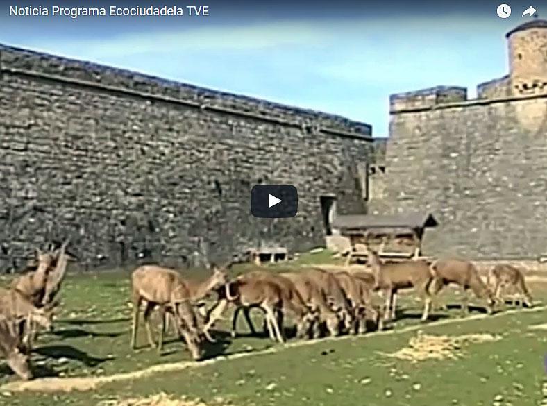 Noticia de TVE: apertura programa Ecociudadela