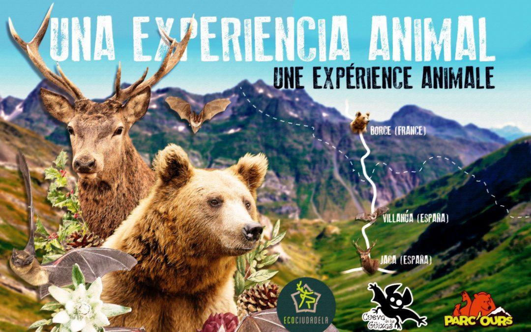 """""""Una experiencia animal"""" conoce la fauna de la Jacetanía"""