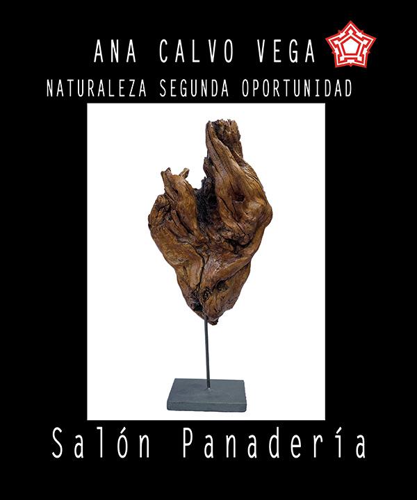 """Exposición """"Naturaleza segunda oportunidad"""" de Ana Calvo"""